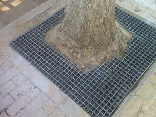 树池盖板 (1)