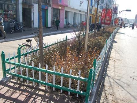 草坪护栏网 (2)
