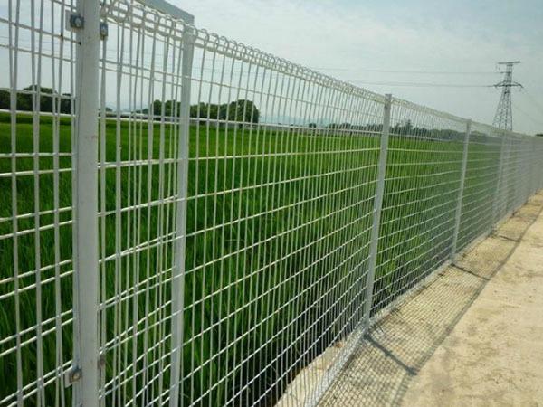 双圈护栏网 (5)